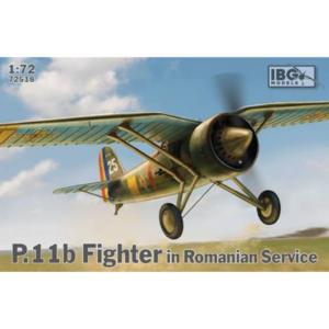 P.11b Fighter in Romanian Service
